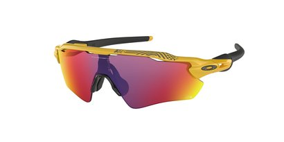 Oakley Radar EV Path Tour Edition Sunglasses