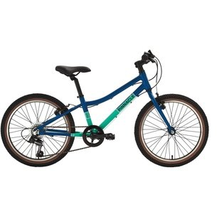 Pinnacle Ash 20 Inch 2020 Kids Bike